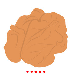 walnut icon color fill style vector image