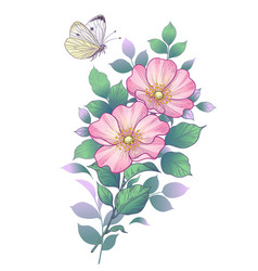 Hand drawn dog-rose branch and butterfly vector