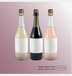 red white and rose wine bottles on transparent vector image