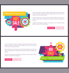 sale premium quality promo labels online posters vector image