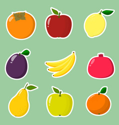 collection of fruit stickers a collection of vector image