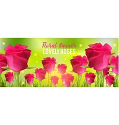 pink roses background realistic flowers and green vector image vector image