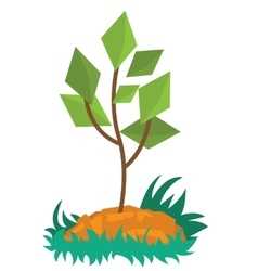 Young green plant growing in soil vector image