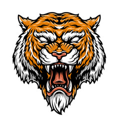 Colorful aggressive strong tiger head vector