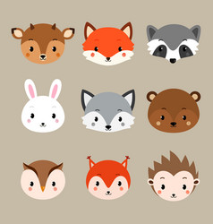 cute woodland animals collection vector image