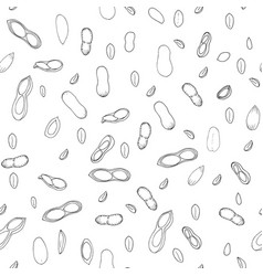 Doodle seamless background with peanuts vector