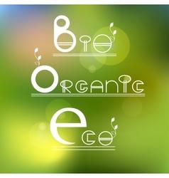 Green eco bio organic product vector
