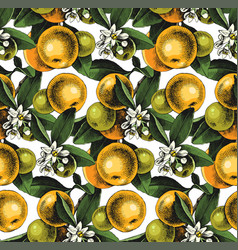 seamless pattern with mandarin branches vector image