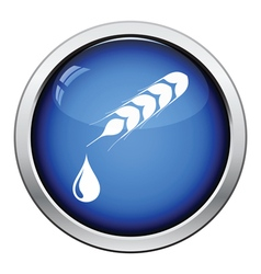 Wheat with drop icon vector image vector image
