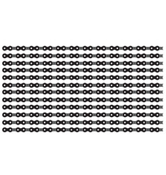 with bicycle chain vector image