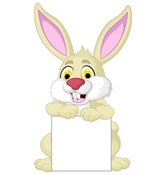 cute rabbit cartoon posing with blank sign vector image vector image