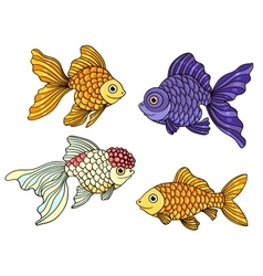 Set of the different goldfishes vector image vector image