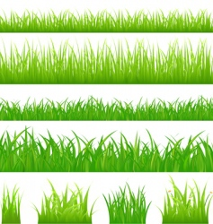 Grassy borders vector
