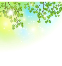 Green leaves tree branches background vector image