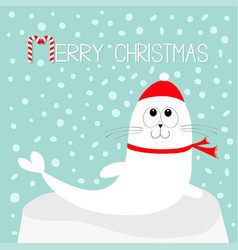 merry christmas candy cane text white sea lion vector image