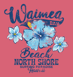 North shore waimea bay surfing paradise vector
