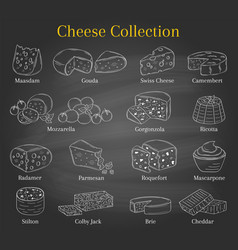 Set different types cheese hand vector