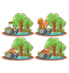set wild animals in park with pond and tree vector image