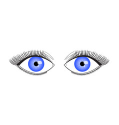 an eyelid with long eyelashes vector image