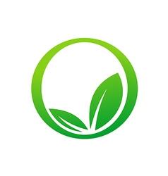 green leaf botany round icon eco logo vector image