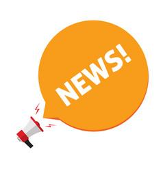 news announcement via megaphone vector image