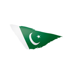 Pakistan flag on a white vector