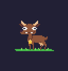 Pixel art goat vector