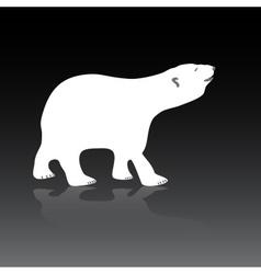 polar bear eps10 vector image