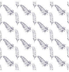 Seamless pattern with hand drawn feathers cute vector