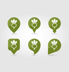 turnip flat pin map icon vegetable root vector image