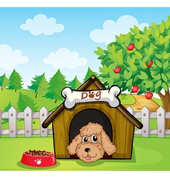 A puppy and his dog food vector image vector image