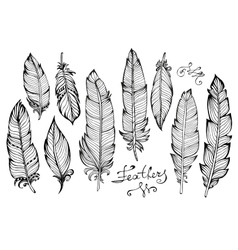 Hand drawn bird feathers closeup big set isolated vector image