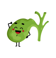 Human gallbladder cute cartoon character vector