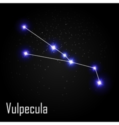 Vulpecula Constellation with Beautiful Bright vector image
