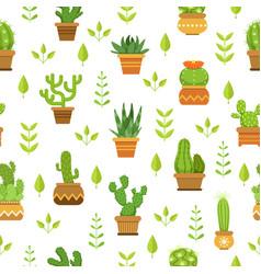 desert plants with flowers cactus in pots vector image vector image