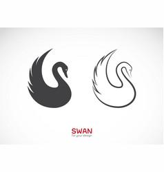 Two swan design on white background wild animals vector