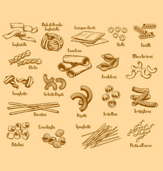 Italian pasta types and names vector