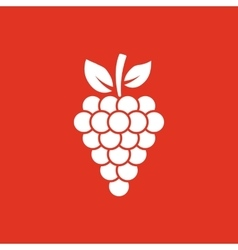 The grapes icon Grape grapes wine symbol UI vector image