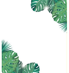tropic leaves with sunshine tropic background vector image