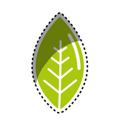 sticker green leaf environment care icon vector image vector image