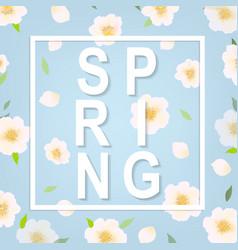 Cherry flower spring banner vector