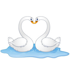 cartoon couple swans lover kissing vector image