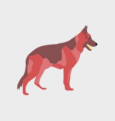 in flat style german shepherd vector image