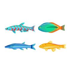 Mackerel blue fish zebra mbuna vector