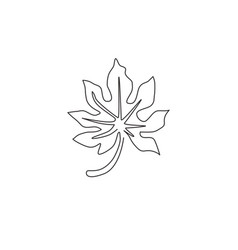 one continuous line drawing tropical papaya vector image