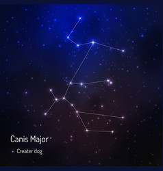 onstellation in the night starry sky vector image