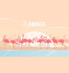 set flamingos on background vector image