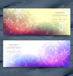 Snowflakes banners vector