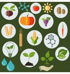 Agronomic icons flat style vector