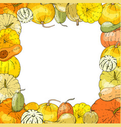 autumnal card for thanksgiving or seasonal design vector image